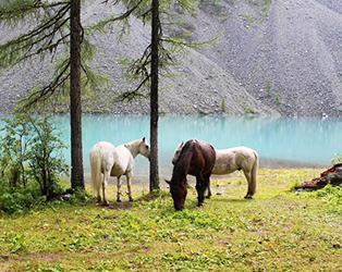 Поход на Шавлинские озера на конях